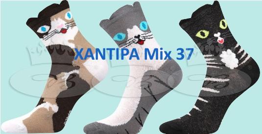 Xantipa Mix 37